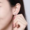 Boucle d'oreille licorne argent 2